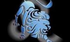 Aslan Erkeği