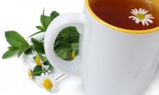 Bitki Çayı, Sebze ve Balık İle Savaşı Kazan
