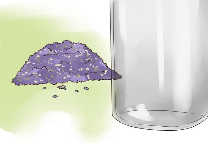 2 doğal böcek ilacı yapalım