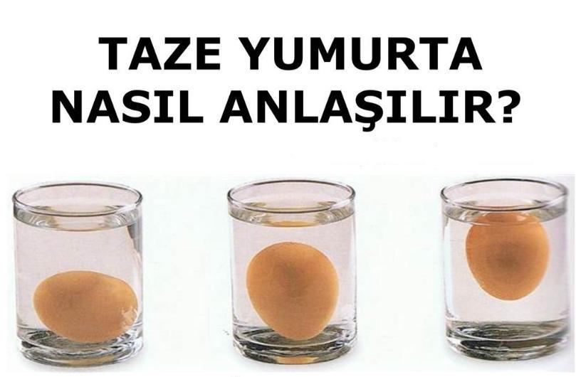 Yumurtanın taze olup olmadığını anlama testi