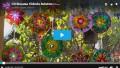 CD Boyama Videolu Anlatım