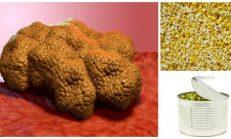 Bu Gıdalar Kanser Hücrelerini Büyütür! Doğrudan Yemeyin