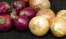 Soğanı Sevmeniz İçin Pek Çok Neden Var! Özellikle 30 Yaş Üzeri Kadınlar Mutlaka Okuyun