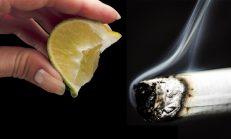 Nikotin Bağımlılığından Kurtulmak İçin 7 Doğal ve Basit Yol