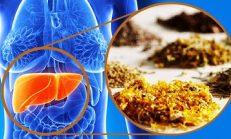 Bu 7 Besin Karaciğeri Tertemiz Yapıyor İşte O Besinler